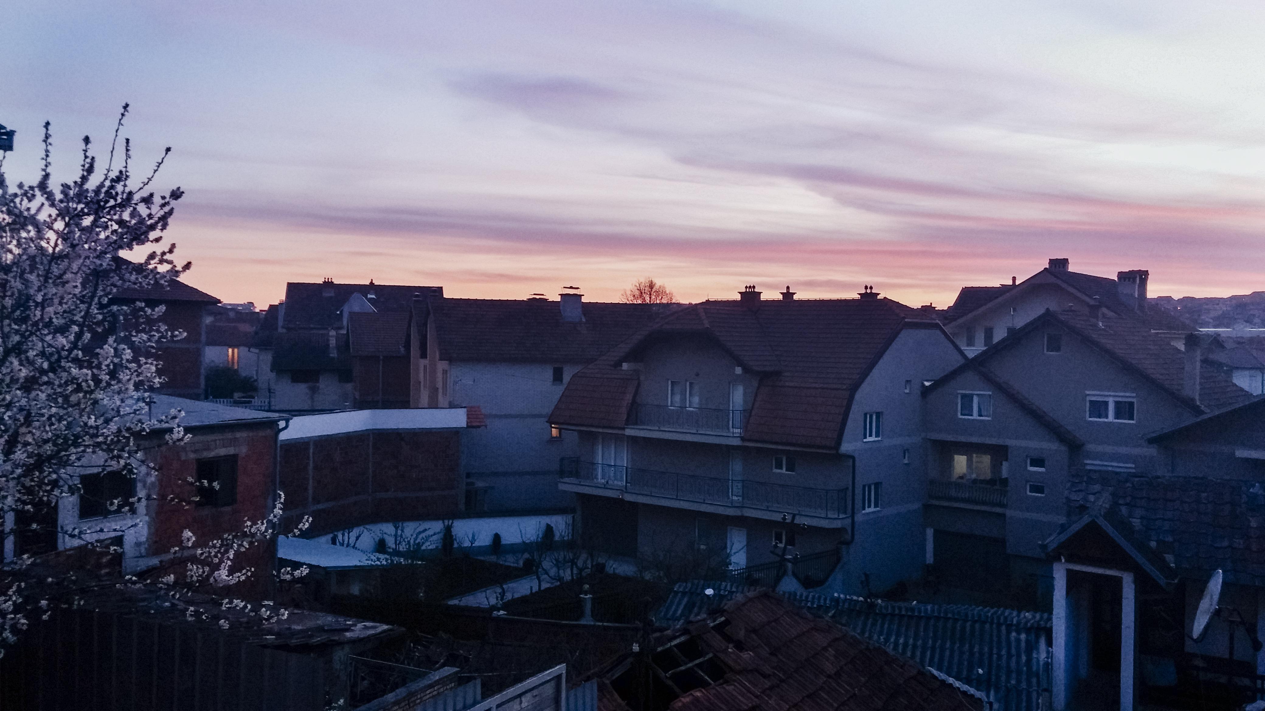 The Scent of Prishtina